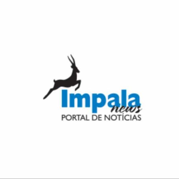 Abutre-preto consolida restabelecimento no Alentejo com mais três crias este ano